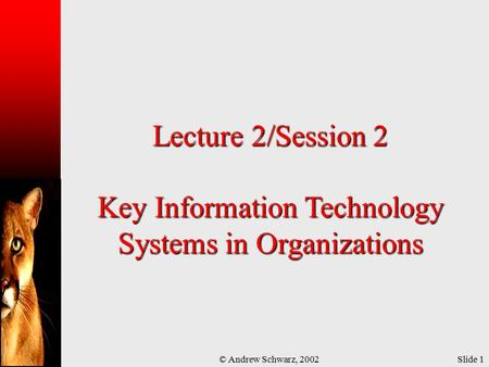 © Andrew Schwarz, 2002Slide 1 Lecture 2/Session 2 Key Information Technology Systems in Organizations.