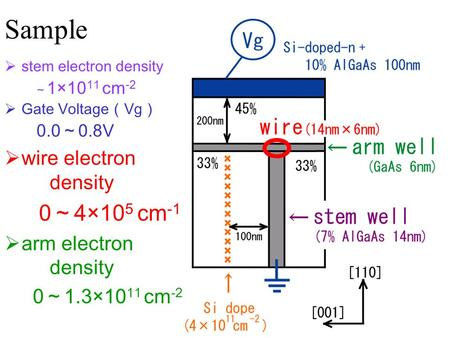  stem electron density ~ 1×10 11 cm -2  Gate Voltage ( Vg ) 0.0 ~ 0.8V  wire electron density 0 ~ 4×10 5 cm -1  arm electron density 0 ~ 1.3×10 11.