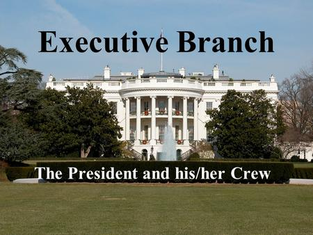 Executive Branch The President and his/her Crew. The President (remember to capitalize, even though the media don't seem to) is the head of the executive.