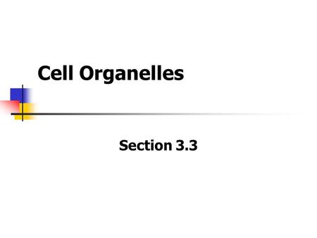 Cell Organelles Section 3.3. The Nucleus The nucleus is an internal compartment that houses the cell's DNA. Most functions of a eukaryotic cell are controlled.