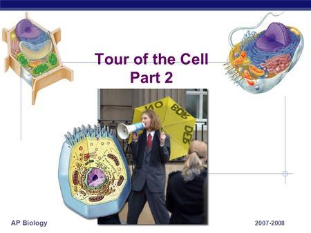 AP Biology 2007-2008 Tour of the Cell Part 2 AP Biology From food to making Energy  Cells must convert incoming energy to forms that they can use for.
