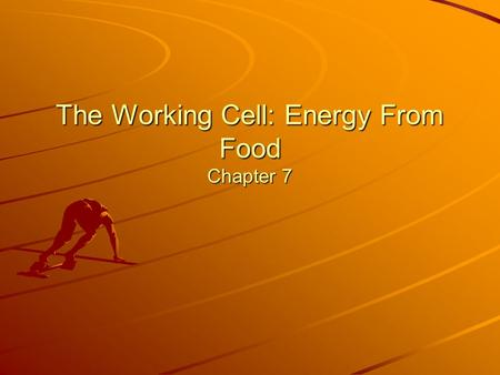 The Working Cell: Energy From Food Chapter 7