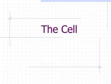 The Cell. Background Think of cells as colorful little building blocks. Cells come together to construct living things.