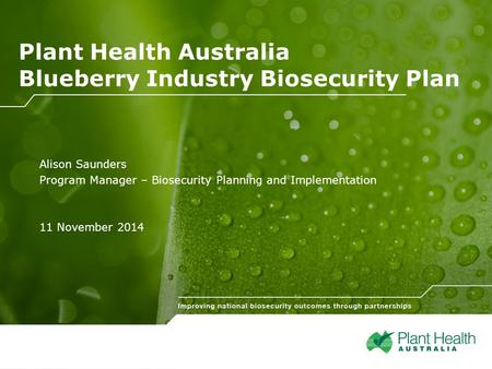 Click to edit Sub-heading Plant Health Australia Blueberry Industry Biosecurity Plan Alison Saunders Program Manager – Biosecurity Planning and Implementation.