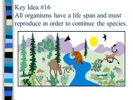 Key Idea #16 All organisms have a life span and must reproduce in order to continue the species.