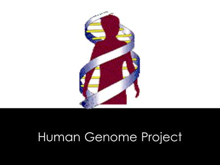 Human Genome Project. In 2003 scientists in the Human Genome Project obtained the DNA sequence of the 3 billion base pairs making up the human genome.