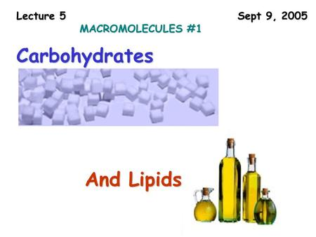 Lecture 5 Sept 9, 2005 MACROMOLECULES #1 Carbohydrates And Lipids.
