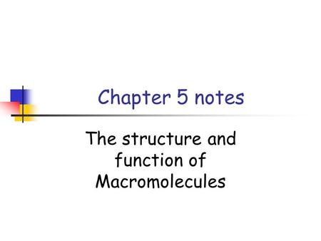 Chapter 5 the structure and function