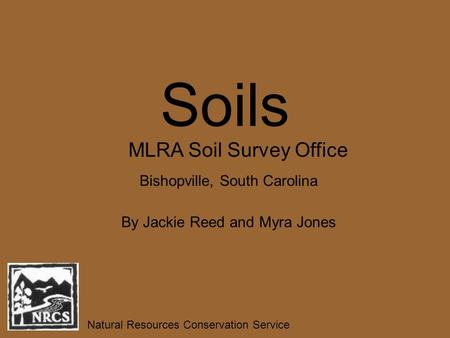 Soils By Jackie Reed and Myra Jones Natural Resources Conservation Service MLRA Soil Survey Office Bishopville, South Carolina.