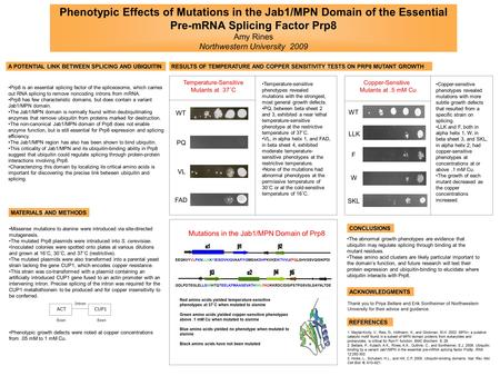 Phenotypic Effects of Mutations in the Jab1/MPN Domain of the Essential Pre-mRNA Splicing Factor Prp8 Amy Rines Northwestern University 2009 Prp8 is an.