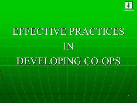 Bcics.uvic.ca 1 EFFECTIVE PRACTICES IN DEVELOPING CO-OPS.