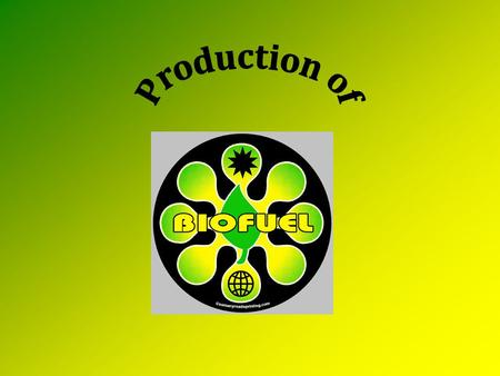 How can plant biomass become fuel? Ethanol Biodiesel Burgeoning (expanding) Technologies – DMF – Butanol – Fischer Tropsch.