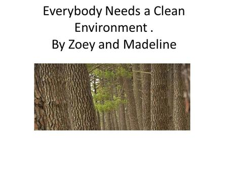 Everybody Needs a Clean Environment. By Zoey and Madeline.