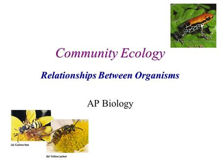 Community Ecology Relationships Between Organisms AP Biology.