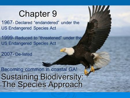 "Chapter 9 Sustaining Biodiversity: The Species Approach 2007 - De-listed 1999 - Reduced to ""threatened"" under the US Endangered Species Act 1967 - Declared."