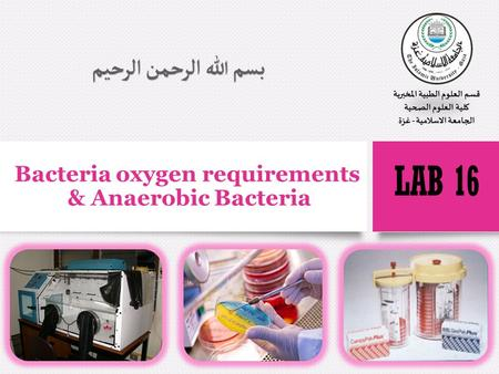 Bacteria oxygen requirements & Anaerobic Bacteria.