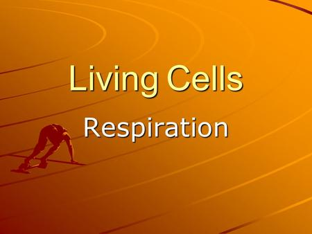 Living Cells Respiration. Energy release There are 3 main food groups; CarbohydratesFatsProteins Carbohydrates are energy-rich compounds, often referred.