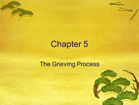 Chapter 5 The Grieving Process. Types of Loss  Obvious Loss  Death, theft, failure, injury, disability  Loss Due to Change  Divorce, moving, change.