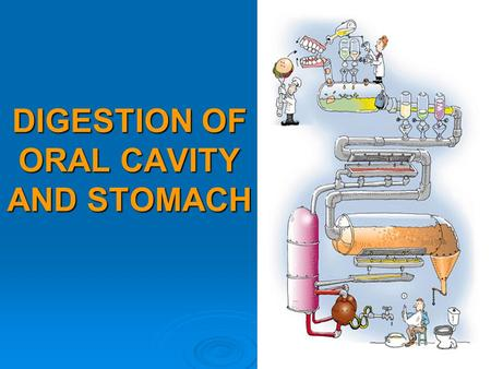 DIGESTION OF ORAL CAVITY AND STOMACH