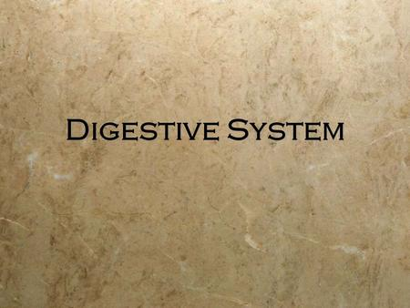 Digestive System. Functions  Ingestion  Secretion  Mixing and propulsion  Digestion  Absorption  Defecation  Ingestion  Secretion  Mixing and.