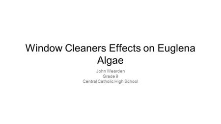 Window Cleaners Effects on Euglena Algae John Wearden Grade 9 Central Catholic High School.