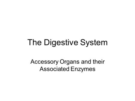 Accessory Organs and their Associated Enzymes