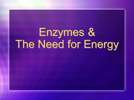 Enzymes & The Need for Energy Section 1: Enzymes.