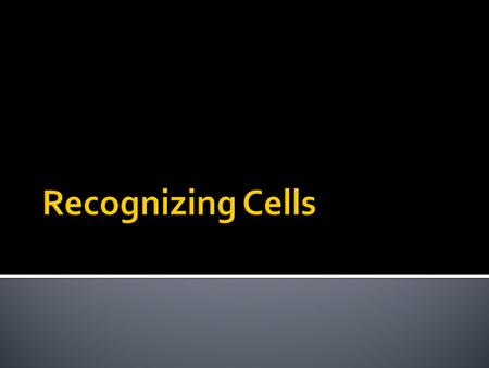 Recognizing Cells.