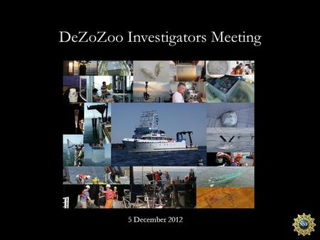 DeZoZoo Investigators Meeting 5 December 2012. What are we doing here today? What we said we would do. What we actually did. What does it mean. What and.