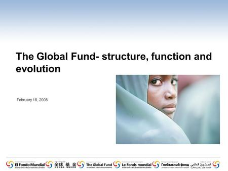 The Global Fund- structure, function and evolution February 18, 2008.