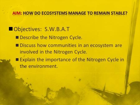 Objectives: S.W.B.A.T Describe the Nitrogen Cycle. Discuss how communities in an ecosystem are involved in the Nitrogen Cycle. Explain the importance of.