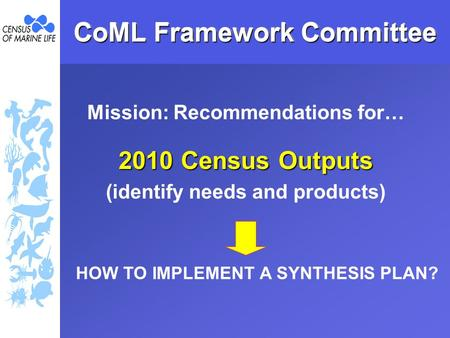 CoML Framework Committee Mission: Recommendations for… 2010 Census Outputs (identify needs and products) HOW TO IMPLEMENT A SYNTHESIS PLAN?