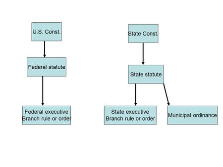 U.S. Const. Federal statute State Const. Federal executive Branch rule or order State statute Municipal ordinance State executive Branch rule or order.