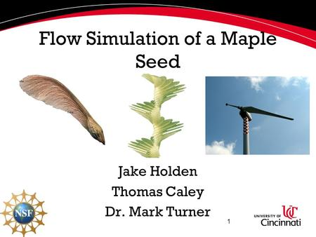 Flow Simulation of a Maple Seed Jake Holden Thomas Caley Dr. Mark Turner 1.