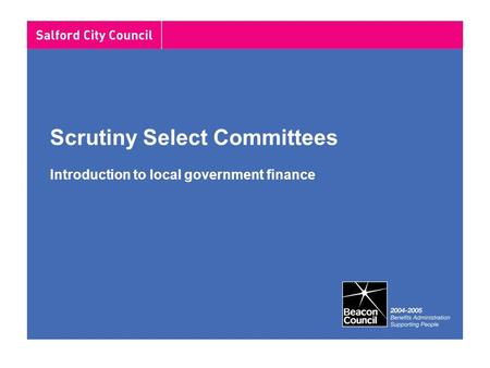 Scrutiny Select Committees Introduction to local government finance.