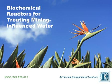 Biochemical Reactors for Treating Mining- influenced Water.