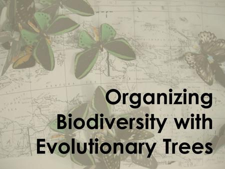 Organizing Biodiversity with Evolutionary Trees. Classification & Taxonomy Aristotle - first classification system John Ray - developed classification.