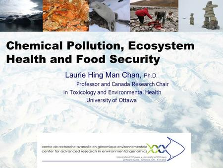 Chemical Pollution, Ecosystem Health and Food Security Laurie Hing Man Chan, Ph.D. Professor and Canada Research Chair in Toxicology and Environmental.