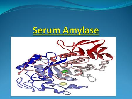 DESCRIPTION AMYLASE belongs to the family of glycoside hydrolase enzymes that break down starch into glucose molecules. Amylase (EC 3.2.1.1) cleave at.