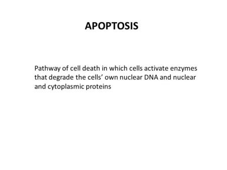 APOPTOSIS Pathway of cell death in which cells activate enzymes that degrade the cells' own nuclear DNA and nuclear and cytoplasmic proteins.