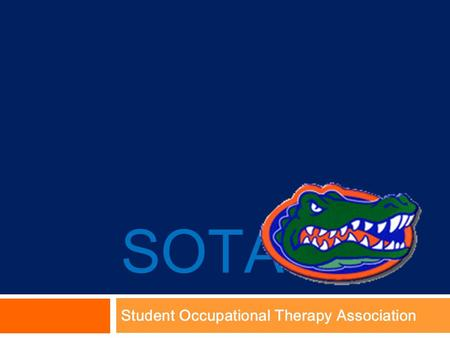 SOTA Student Occupational Therapy Association. Occupational Therapy RAP 