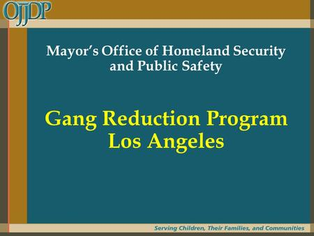 Mayor's Office of Homeland Security and Public Safety Gang Reduction Program Los Angeles.
