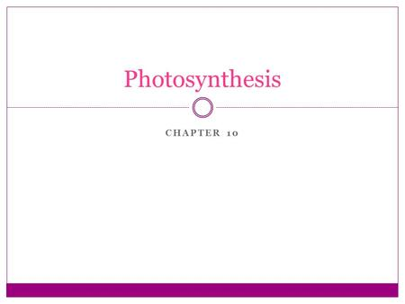 CHAPTER 10 Photosynthesis. Sunlight as an Ultimate Energy Source All living things need energy Photosynthesis provides this energy  Converts light energy.