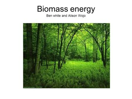 Biomass energy Ben white and Alison Wojo. 2 Method of convertion 3 ways of turning biomass into fuel: Thermal Chemical Biochemical.