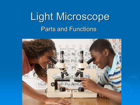 Light Microscope Parts and Functions. A. Eye piece Contains the ocular lens Magnification 10x.
