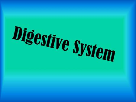 Digestive System. Includes: mouth, esophagus, pharynx, stomach, small and large intestines. Its function is to help convert foods into simpler molecules.