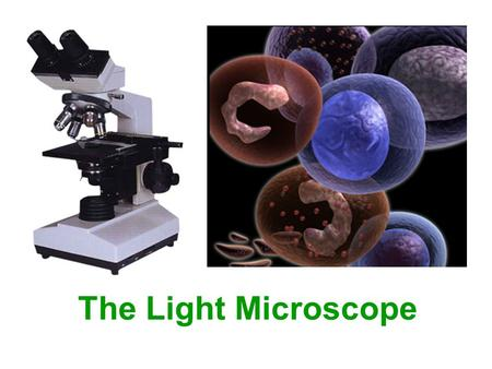 The Light Microscope. The light microscope Eyepiece lens Coarse adjustment knob Fine adjustment knob Nosepiece Stage and Stage Clips Condenser Diaphragm.