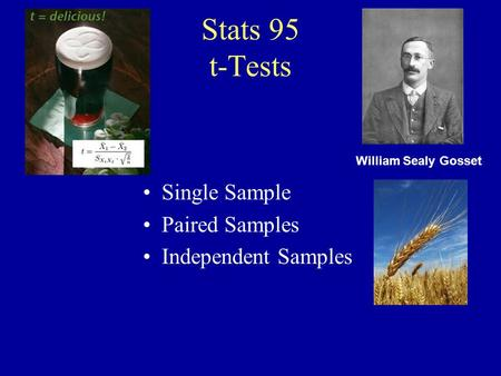 Stats 95 t-Tests Single Sample Paired Samples Independent Samples
