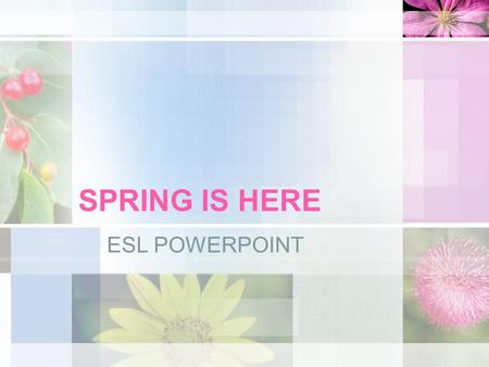 SPRING IS HERE ESL POWERPOINT WEATHER Spring is a wonderful season because the weather is perfect. It's not too hot, and it's not too cold.