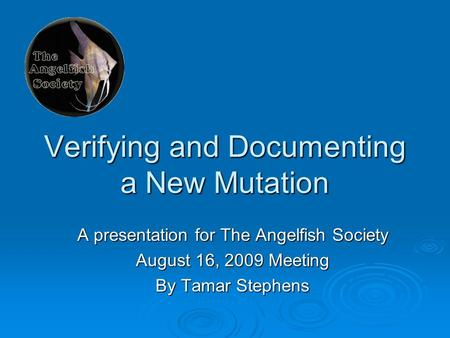 Verifying and Documenting a New Mutation A presentation for The Angelfish Society August 16, 2009 Meeting By Tamar Stephens.